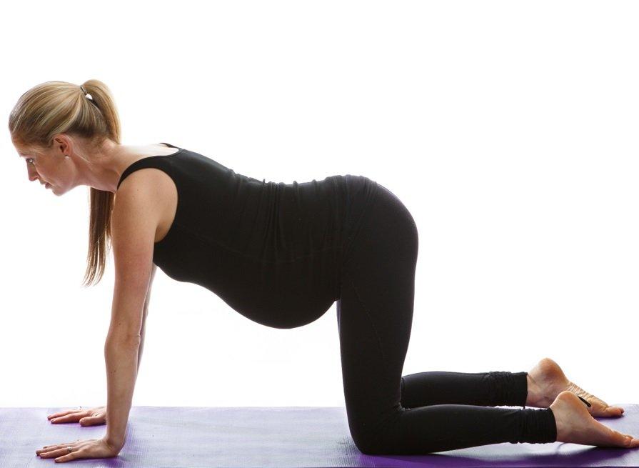 Prenatal Sun Salutation Yoga Video